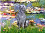 WATER LILIES<br> & Scottish Deerhound
