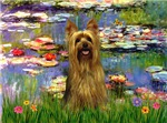 WATER LILIES<br>& Silky Terrier