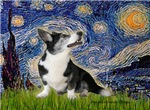STARRY NIGHT<br>& Bi Black Welsh Corgi