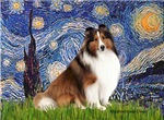 STARRY NIGHT<br>& Shetland Sheepdog (SW)