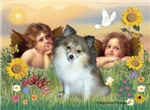 ANGELS<br>& Pomeranian #1