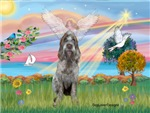 ANGEL STAR <br> & Italian Spinone