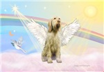  ANGEL IN CLOUDS <br> & Italian Spinone