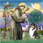 Saint Francis with a<br>Tri Color Collie