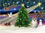 CHRISTMAS MAGIC<br>& Pomeranian