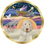 CHRISTMAS STAR<br>& Italian Spinone