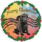 CHRISTMAS MUSIC <br>& Labrador Retriever