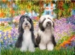 GARDEN AT GIVERNEY<br>& Two Bearded Collie