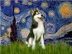 STARRY NIGHT<br>& Siberian Husky(BW)