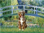 LILY POND BRIDGE<br>& Red  Australian Shepherd