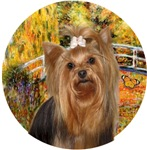 Yorkshire Terrier #7<br>Japanese Foot Bridge