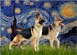 STARRY NIGHT<br>& Two German Shepherds