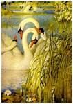Swans, Vintage Art Painting Print
