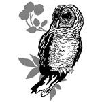 OYOOS Owl design