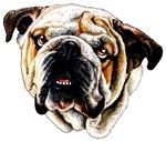 Bulldog's Bazaar