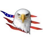 American Eagle Patriotic Tees T-shirts Gift Ideas