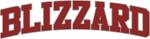 BLIZZARD Design