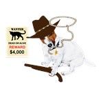 Sheriff Jack Russell