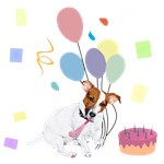 JRT Celebrations: Happy Birthday