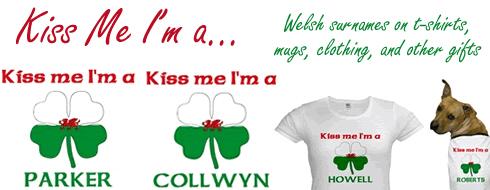 Kiss Me I'm Welsh