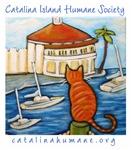 Orange Cat at Casino