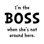 Im The Boss Shes Not Around