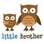 Little Brother - Mod Owl