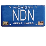 Michigan NDN Pride