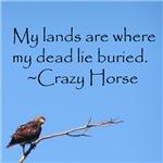 Crazy Horse Quote
