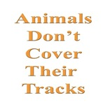 Animals Don't Cover Their Tracks