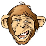 Funny Monkey Ape Face