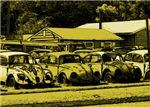 Volkswagen Beetle Car  Graveyard
