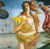 Venus on the Clamshell