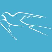 Stylized Swallow-tailed Flycatcher