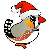 Zebra Finch Santa Apparel & Gifts