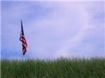 U.S. Military Tribute