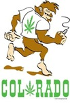 Colorado Bigfoot