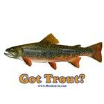 Got Trout?
