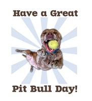 Great Pit Bull Day
