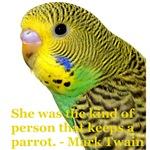 Parakeet 2 Steve Duncan