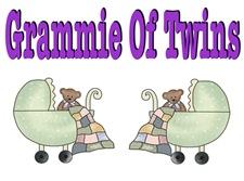 Grammie Of Twins