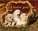 Howlin' Good Time