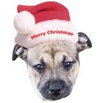 Christmas Staffordshire Bull Terrier