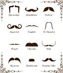 Mustache Style Identification Chart