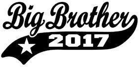Big Brother 2017 t-shirt