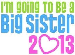 Big Sister 2013 t-shirt