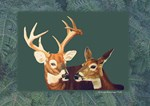 Buck and Doe Deer