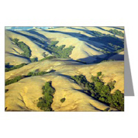 Sf Bay Area Nature Greeting Cards