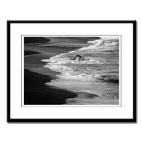 Black & White California Coast Photography