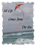 All Life Comes From The Sea